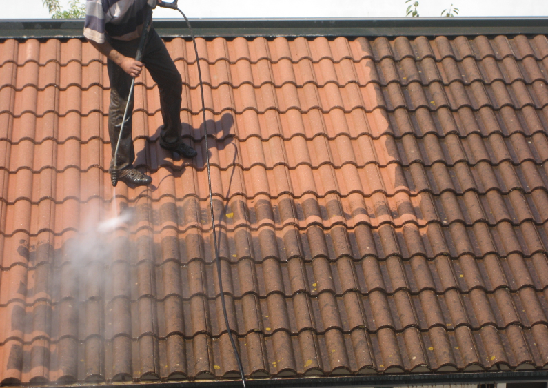 traitement toiture2.PNG